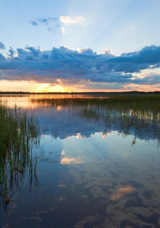 rushy: Summer rushy lake sunset view with cloud reflections in water surface