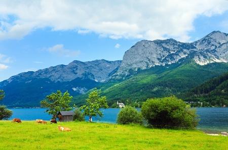 campo de flores: Verano bella vista Grundlsee de lago alpino (Austria)