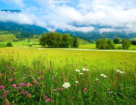 Alpen bergweide rustige zomer uitzicht Stockfoto