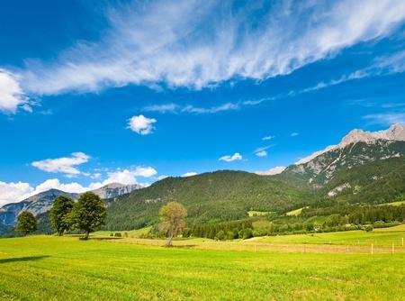 Alps mountain meadow tranquil summer view (Austria, Gosau village outskirts) photo