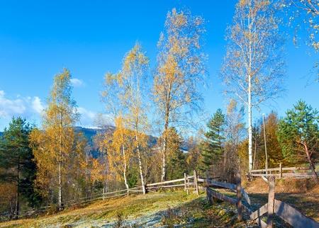 Autumn hoarfrost on mountain village outskirts glade