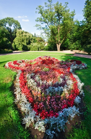 floriculture: Blossoming colorful flowerbed in summer city park