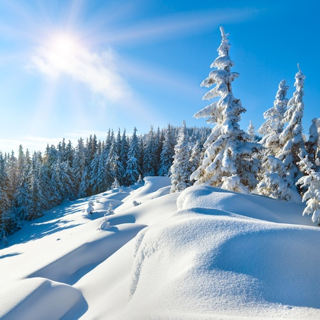 Snowdrifts on winter snow covered mountainside, fir trees on hill top and sun shine in blue sky (square proportions)