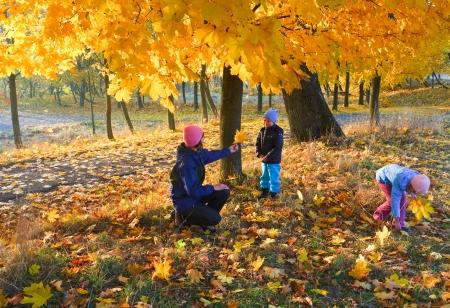 Gelukkige familie (moeder met kleine kinderen) lopen in gouden esdoorn het najaar van park Stockfoto