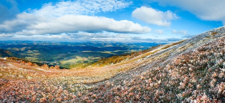 October Carpathian mountain Borghava plateau with first winter snow on bilberry bush and autumn colorful foliage.