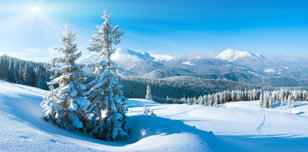 Morning winter calm mountain landscape with fir trees on slope (Goverla and Petros Mount view, Carpathian, Ukraine). Three shots stitch image. photo