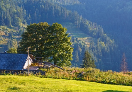 Summer mountain village landscape with shed on hill slope