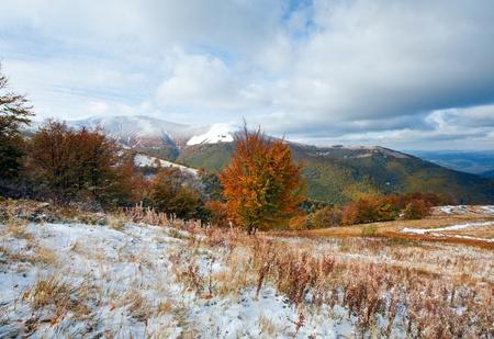 October Carpathian mountain Borghava plateau with first winter snow and autumn colorful foliage photo