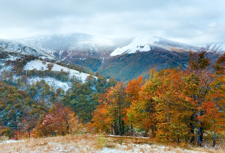 October Carpathian mountain plateau with first winter snow and autumn colorful foliage photo