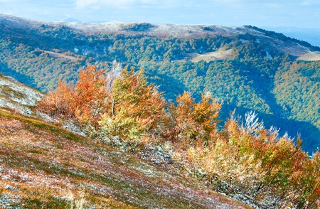 borghava: October Carpathian mountain Borghava plateau with first winter snow and autumn colorful bilberry bushes