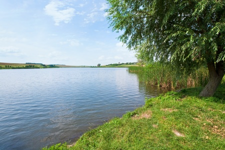 Summer rushy lake view with village on opposite shore Stock Photo