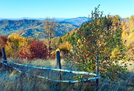 Autumn  mountain Nimchich pass (Carpathian, Ukraine) and colorful trees on hill. Stock Photo - 12887532