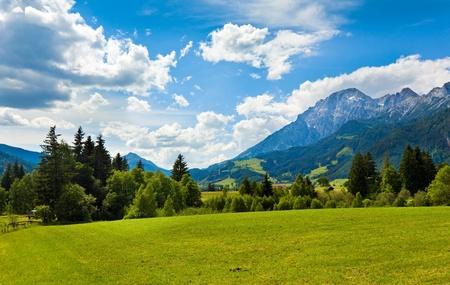 Alps mountain meadow tranquil summer view (Austria, Gosau village outskirts)