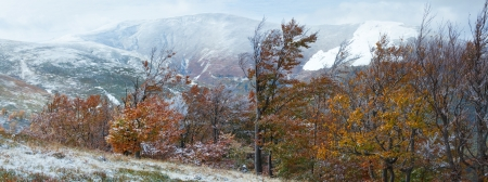 borghava: October Carpathian mountain Borghava plateau panorama with first winter snow and autumn foliage. Two shots composite picture.