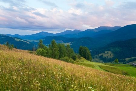 Summer mountain landscape with flowering grassland in front Stock Photo