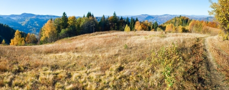 Autumn  mountain Nimchich pass panorama (Carpathian, Ukraine) with country road and colorful trees on hill.
