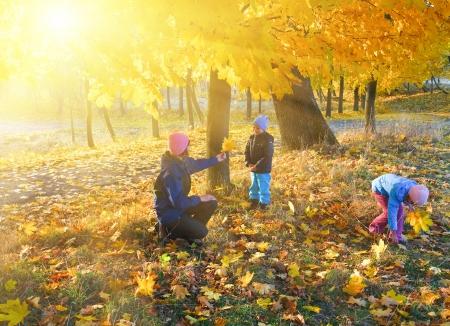Gelukkig gezin (moeder met kleine kinderen) lopen in gouden esdoorn het najaar van park en de zon achter de boom gebladerte