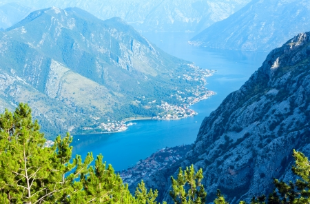 Bay of Kotor summer misty view from up with pine forest on slope (Montenegro) Stock Photo - 15333067