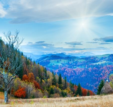Autumn misty morning mountain with haystack stark bare tree and sunshine (Carpathian Mts, Ukraine)