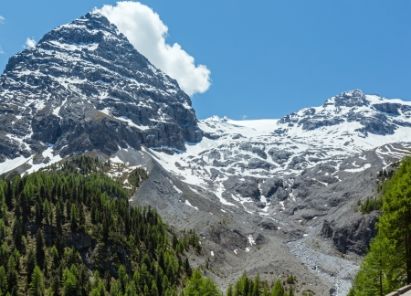 Summer Stelvio Pass with fir forest and  snow on mountain top (Italy) photo