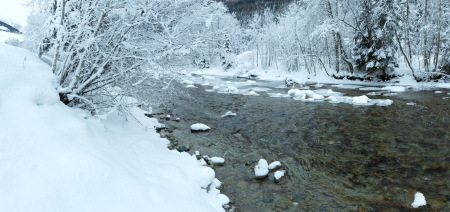 limpid: Winter mountain limpid river landscape with snowy trees on riverside.  Stock Photo