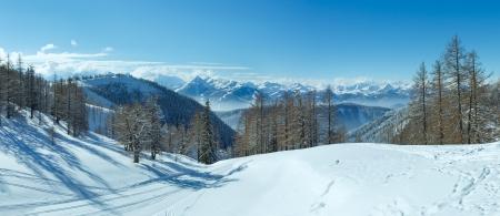 Boschetto invernale vicino Dachstein massiccio di montagna e piste da sci (Austria). Panorama.