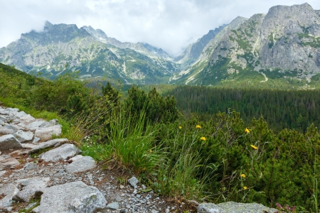 footway: High Tatras summer cloudy mountain view (Slovakia, footway between Popradske Pleso and Strebske Pleso) Stock Photo