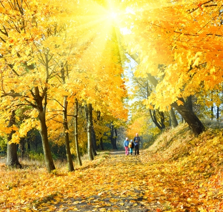 Happy family (mother with small children) walking in golden maple sunshine autumn park photo