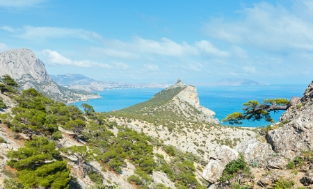 rocky mountain juniper: Coastline of  Novyj Svit  reserve summer view (Crimea, Ukraine, Capchik Cape  on center).
