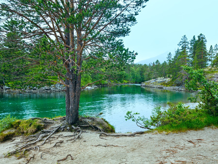 norge: Summer mountain river view (near Stordal, Norge).
