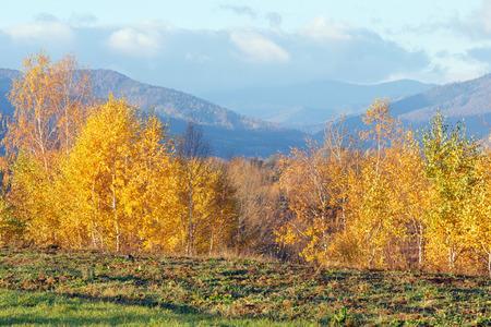 Morning Carpathian mountain autumn landscape (Ivano-Frankivsk region, Ukraine) Stock Photo