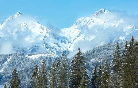 tirol: Winter mountain landscape with fir trees (Heiterwang outskirts, Austria, Tirol)
