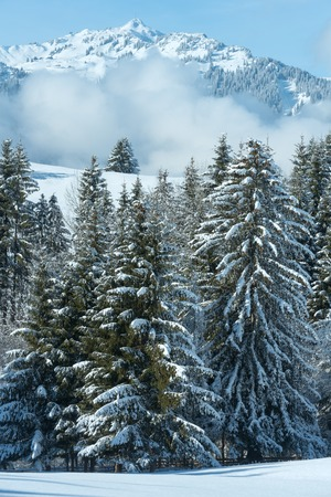 trees  sky: Winter mountain landscape with low-hanging clouds on slope (Austria, Bavaria).