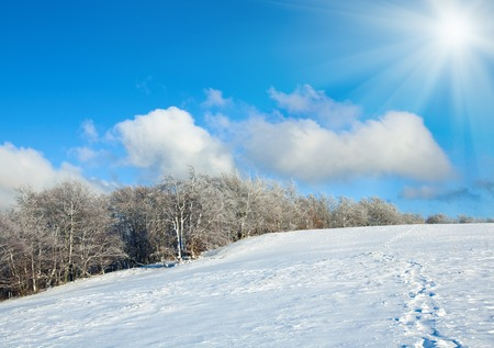 tableland: October mountain beech forest edge, first winter snow and sunshine in blue sky