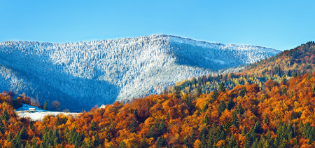 mountainside: Yellow sunny autumn mountain forest and first autumn frost and snow on far mountainside. Stock Photo