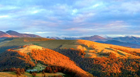 evening glow: Autumn evening plateau landscape with lust golden sunlight on mountains and pink evening glow in sky.