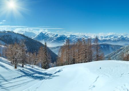 skipiste: Winter grove near Dachstein mountain massif and ski run (Austria)