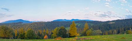 green ridge: Summer evening twilight panorama view with green pasture meadow and distant ridge (Slavske village outskirts, Carpathian, Ukraine).