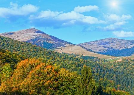 Autumn mountain forestry overgrown hill  view  (Ukraine, Carpathian)