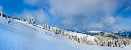 sheds: Winter calm mountain landscape with fir forest and sheds group on slope (Carpathian Mountains, Ukraine).