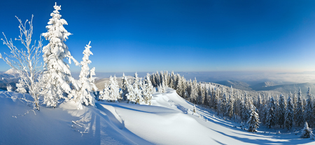 rime: Winter calm mountain snowy landscape (Carpathian, Ukraine). Stock Photo