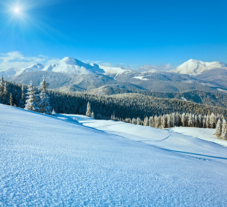 Snowy sunshine winter mountain landscape withr rime and snow covered fir trees on mountainside (Carpathian, Ukraine)