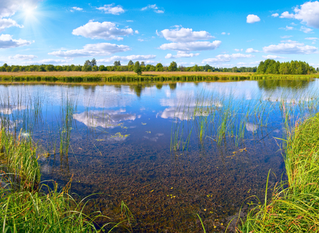 rushy: Summer rushy lake view with clouds reflections and sunshine cloudy sky