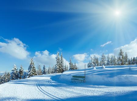 bosque de abetos de la montaña Paisaje nevado invierno con pista de esquí y un banco (parte superior de Papageno Bahn - Filzmoos, Austria) Foto de archivo