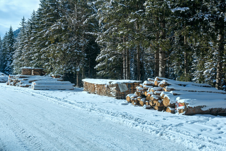 country store: Stock of firewood along country winter road near fir forest. Stock Photo