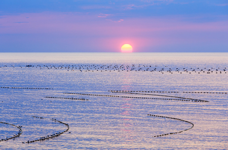 Beautiful fascinate morning sea view with sunrise and fishing nets.