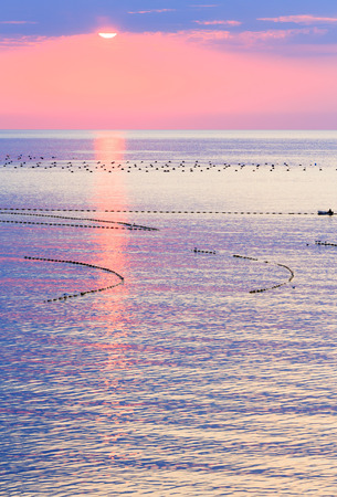 fascinate: Beautiful fascinate sea sunrise with pink sky, sun track and buoys of fishing nets on water surface. Human on boat is unrecognizable. Stock Photo