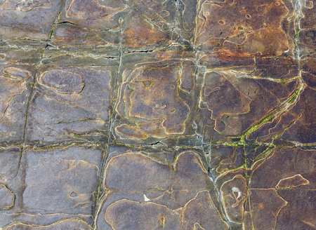 stony: Stony background macro with interesting abstract tracery (brown with yellow vein. Stock Photo