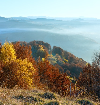 Morning fog in autumn Carpathian. Mountain landscape  with colorful trees on slope.