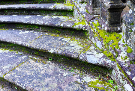 lichen: Old town stony staircase (closeup) with green moss and lichen.
